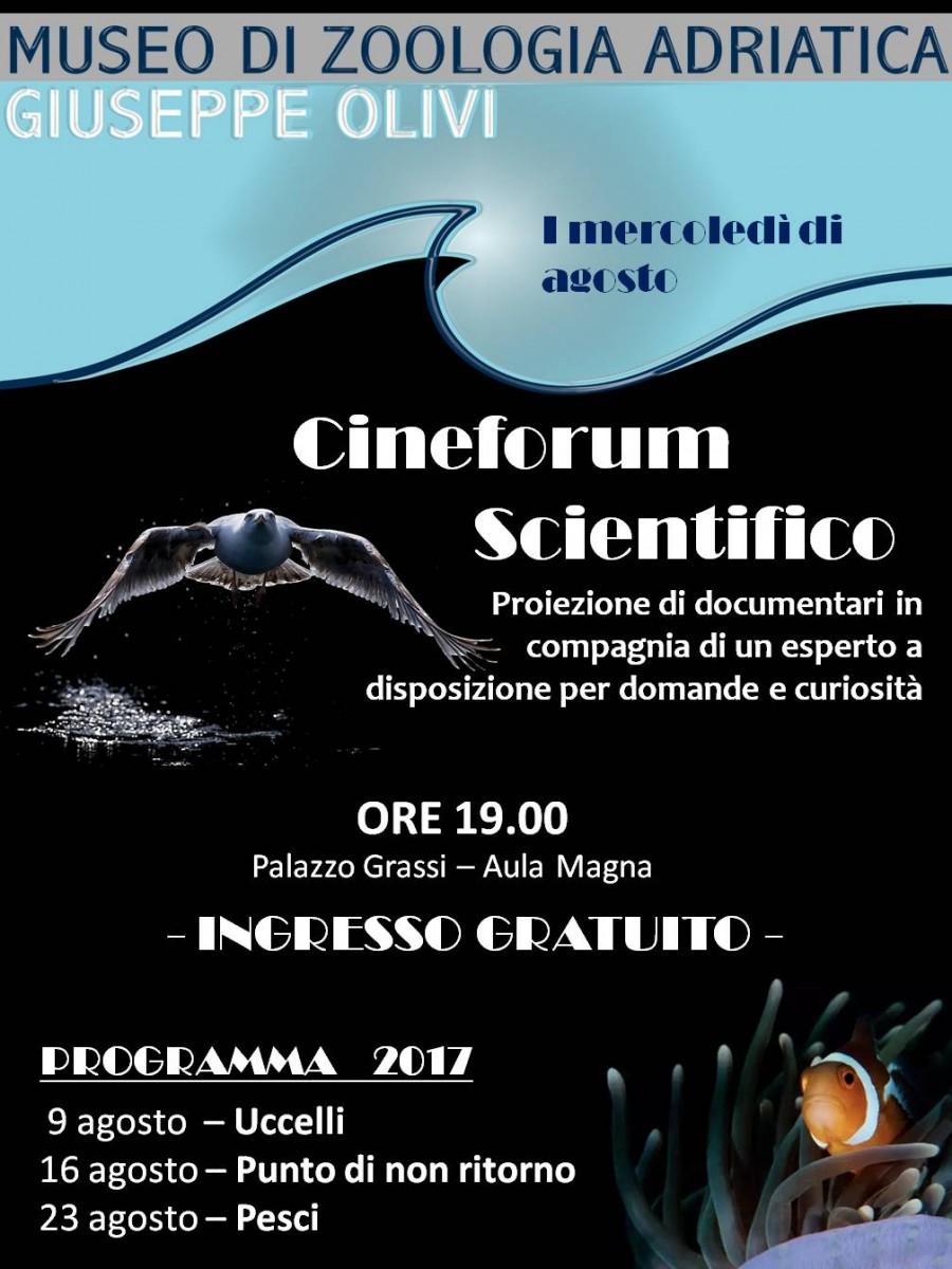 locandina cineforum 2017