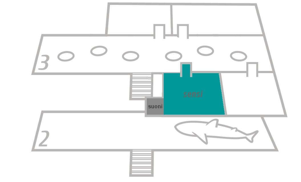 mappa del museo